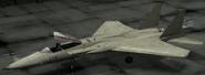 F-15C Erusian color Hangar