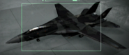 F-14D Razgriz color Hangar