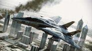 F-14D over Dubai (ACAH)