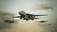 Osean F-14D Squadron