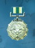 AC3D Medal 03 Gold Star of Victory.png