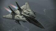 F-14D Super Tomcat Infinity Flyby