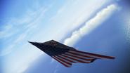 F117 Star Stripes Flyby 3