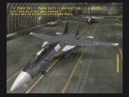 F-14D Schnee 1