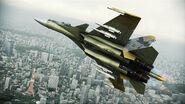 ACAH Su-37 Color 3 Flyby 5