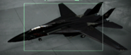 F-14B Razgriz color Hangar