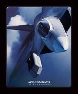 AC7 F-22A Steelbook