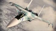 ACAH Su-37 Color 2 Flyby 5