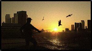 Farbanti Fisherman.jpg