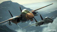 F-14D Formation