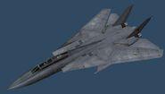 F-14D PMC (Standard Body)