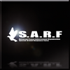 SARF Infinity Emblem.png