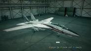 F-14D EAF SP