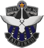 Official Albireo Squadron Patch.png