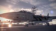 F-14D Emmerian Carrier