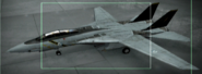 F-14A OMDF color Hangar