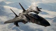 AC7 F-14D -Razgriz- Flyby