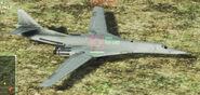 USEA Tu-160 2