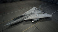 F-14D AC7 Color 1 Hangar