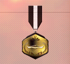 Ace x2 sp medal ghost hunter.png