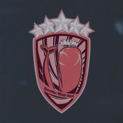 Red Service Medal (Aerial Fleet Suppression) Emblem.png
