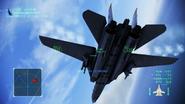 Great Migration F-14A Underside