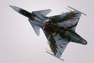 Gripen C -Griffon- Hangar