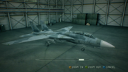 F-14D EAF