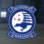 AC7 Garuda (emblem) Emblem Hangar