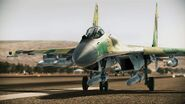 Su-35 Flanker-E Runway