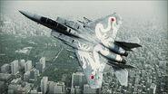 F-15C WHITE DRAGON