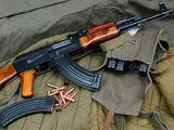 Avtomat Kalashnikova Assault Rifle series