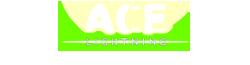 Ace Lightning Wiki