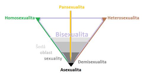 Spektrum sexuálních orientací & sexuality.png