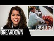 Marine Biologist Breaks Down Shark Attack Scenes from Movies - GQ