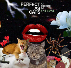 Perfect as Cats.jpg