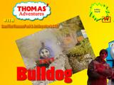 Bulldog (T'AWS&A Version)