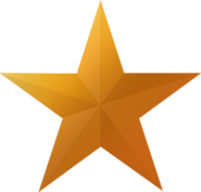 Bronze star icon
