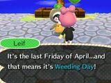 Weeding Day