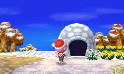 Campsite - Winter.jpg
