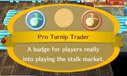 Pro Turnip Trader