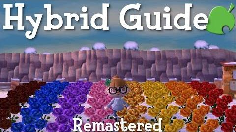 Hybrid Guide Remastered (ACNL)