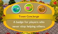 Town Concierge