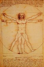 The Vitruvian Man.jpg