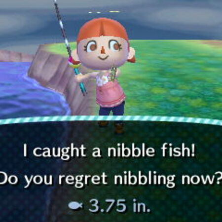 Nibble Fish.JPG
