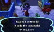 CentipedeCatch