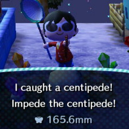 CentipedeCatch.JPG