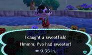 Sweetfish CATCH