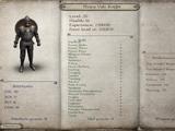 Heavy Vale Knight