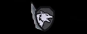 AoA Logo Belyie Volki.png